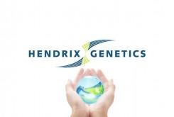 Hendrix-Genetics-logo-696x464